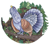 Schützenverein GSO Logo
